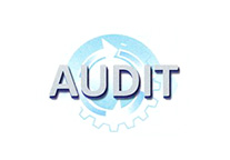 audit logo